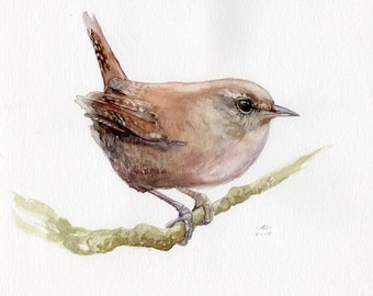Winter wren print, bird giclee print watercolor, bird-lovers gift
