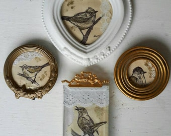 A Collection Of Original Mini Drawings On Collage Of British GardenBirds Framed In Vintage Frames