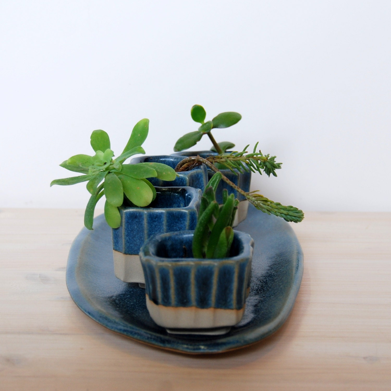 Succulent Pots Plant Pot Set Cactus Pots Indoor Plant Set