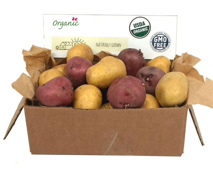 Fall Shipping Red and Yellow Seed Potatoes Mix 2 Lbs. Certified Organic Potato Collection- Non-GMO