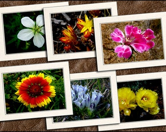 6 Wildflower Photo Note Card Set - Wildflower Greeting Cards Handmade - 5x7 Wildflower Cards - Photo Greeting Cards With Envelopes (GP341))