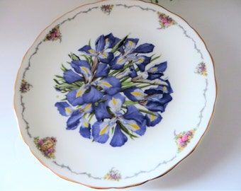 Royal Albert vintage 1990 floral collectable plate, Irises,Royal family