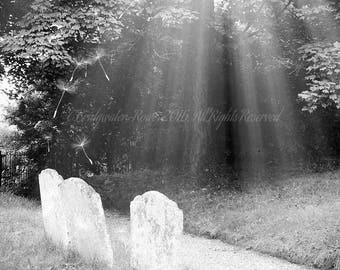 B&W Photography, Cemetery Art, Graveyard, Cemetery Photography, Halloween Decor, Macabre Art, Gothic Art, Black and White Decor, Cemeteries