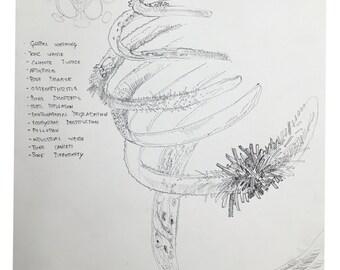 Earth - Original Drawing