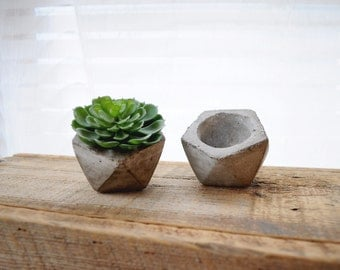 ONE Mini Geometric Concrete Planter Cement Planter Succulent Planter Stone Planter Minimalist Mini Planter Concrete Vase Angled Planter