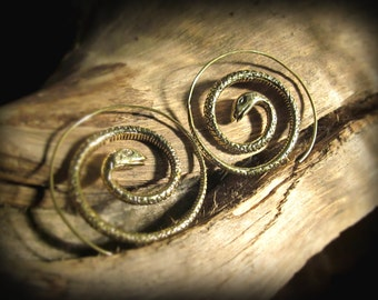 spiral earrings *snake*