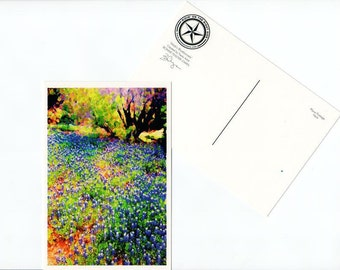 Bluebonnet Postcard Texas State Flower Wildflower Texas Hill Country Card