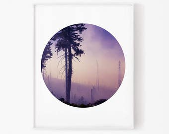 forest photography, forest circle, forest art, circle print, landscape art, nature wall art, forest quote, nature photo, woodland nursery
