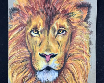 Lion Drawing in Prismacolor colored pencil