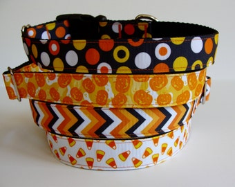 READY TO SHIP! Halloween Dog Collars - Dots, Pumpkins, Chevron, Candy Corn
