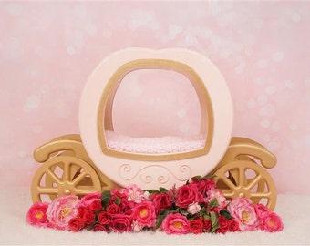 Digital Newborn Backdrop Pink Floral Princess Carriage.