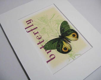 Matted 5 x 7 Butterfly Print, Small Prints, Vintage Butterfly Art, Butterfly Art Print