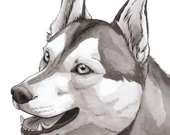 Husky [A4 Watercolour Portrait Print]