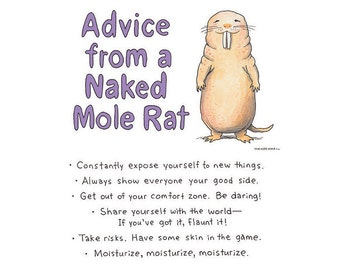 Naked Mole Rat, Bare naked Print, Office Motivation, Funny Mole Rat, Weird Humor Print, Funny Encouragement, Mole Rat Advice, College Gift