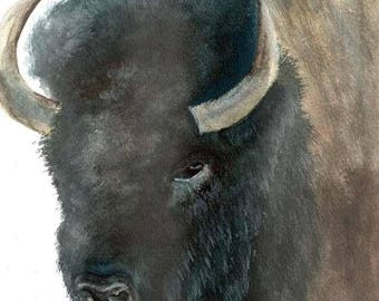 """Giclée print of original watercolor painting of """"American Bison"""" by Mary Thompson © 2015"""