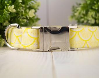 Lemonade  adjustable Dog Collar with Metal Buckle