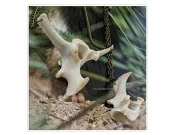 Real deer animal bone jewellery vertebrae spine bronze chain necklaces Taxidermy Oddities