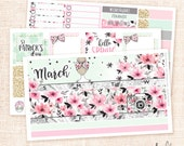March Monthly View Sticker Kit - 3 sheets MATTE REMOVABLE / Vertical Erin Condren