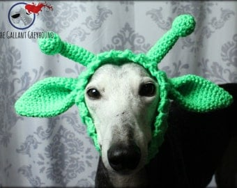 Alien Snood for Greyhounds