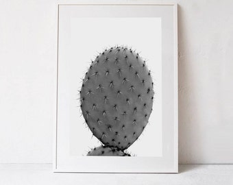 Botanical Print, Cactus Decor, Black and White Cactus Photography INSTANT DOWNLOAD Printable Art, Minimalist Poster, Large Wall Art Print A1