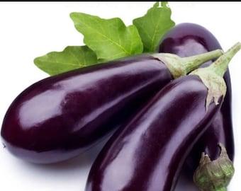 Eggplant Seeds 100pcs   S43