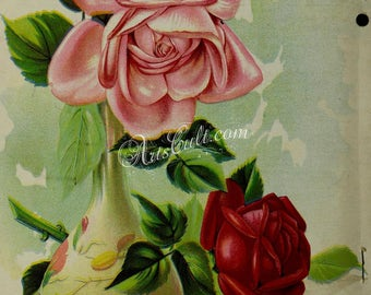 seeds_catalogs-06360 - Roses in vase on table still life nice beautiful pink red vintage cover illustration digital download picture image