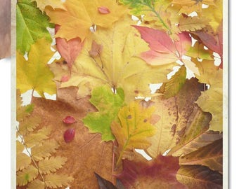 Design Kozo Mulberry Paper for arts, crafts, scrapbooking | foliage autumn fall leaves leave indian summer warm earthy colors