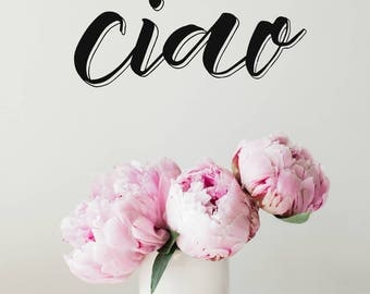 ciao iPhone wallpaper, pink peonies, cellphone background, screensaver, floral photography, lettering, pink and black