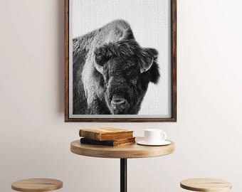 Buffalo Print, Buffalo Wall Art, Buffalo Black and White, Wilderness Wall Art, Buffalo Photography, Buffalo Photo, Buffalo Decor, Home Decor