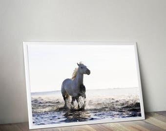 Horse in water, Horse print, white horse, horse photography, horse decor, printable art, horse art print, modern nursery, Animal prints
