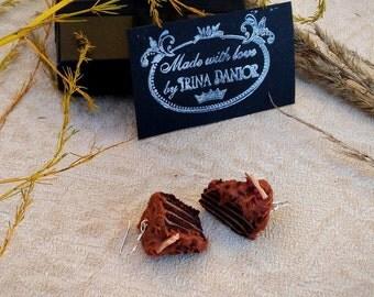 Earrings-cakes - Earrings handmade - Earrings from polymer clay - Chocolate dangle earrings - Delicious earrings - Miniature Food