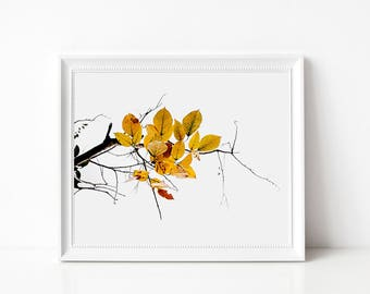 Tree branch print, Photography Wall Art Print, Large Printable Poster, Digital Download, Modern Decor