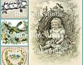Pretty Birds 02,  Printable Collage Sheet (digital download, printable)