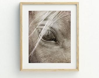 Horse printable, horse wall art, horse wall decor, horse art print, printable photography, black and white wall art, digital print download.