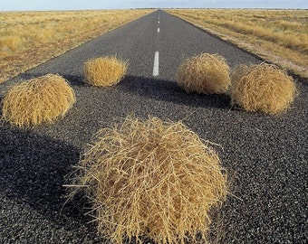 CountryEleganceByMoore is where you can find anything TUMBLEWEED.