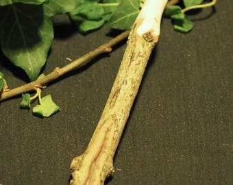 Knotted DogWood Wand - Wishes and Protection - Pagan, Wicca, Witchcraft, Druid