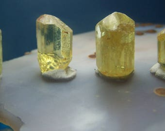 Yellow Apatite 4 crystals  - gemmy specimens- wire wrap raw rough genuine natural gemstone from mexico coyoterainbow points small lot 234YA