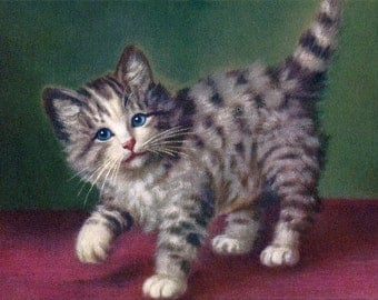 Cat Greeting Card - Grey Tabby Kitten Card - Vintage Style - A. Lampe