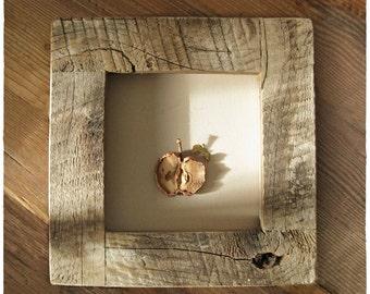 Apple & Leaf ||| Framed in Weathered Wood