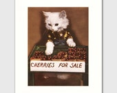 """Cat Print w/Mat (Retro Kitchen Decor, Red 1950s Food Art) """"Cherries for Sale"""" --- Vintage Matted Storybook Page"""