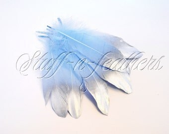 Silver Dipped feathers, Baby Blue GOOSE feathers with Silver Tips loose for millinery, crafts, wedding, 5-8 in (12.5-20 cm), 6 pcs / F195-6S