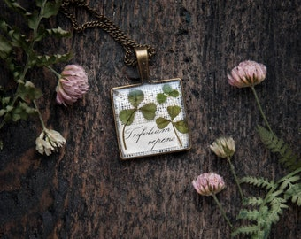 Real Clover necklace - St Patrick's Day jewelry - Dried pressed plants pendant - cute handmade square bronze charm