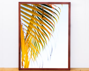Mexico Palm Leaf, Photography Print, Palm Tree, Palm Leaf Wall Art, Travel Photography, Gallery Wall, Engineer Print, Digital Download