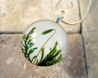 Circle glass tree moss necklace, woodland, bryophyte, moss jewelry, plant jewellery, nature, sporophyte,  forest,silver plated chain