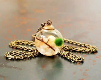 Terrarium Necklace with Live Marimo Moss Ball / Great Gift