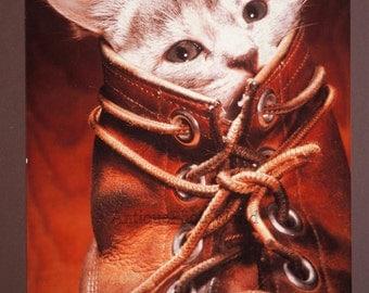 Kitten hiding in a boot fun vintage large art cat photo by M. Videtta