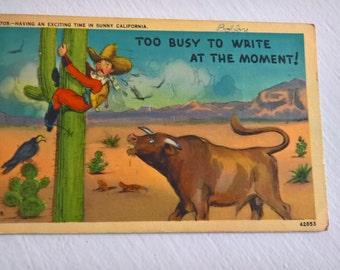 Vintage Californian Cowboy Postcard --- Retro Americana Souvenir Mail --- 1940's Road Trip Travel Desert Southwestern USA Style Home Decor