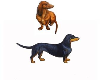 Dachshund gift, Dachshund jewellery, Dachshund brooch, dog pin, sausage dog, sausage dog brooch, sausage dog jewellery