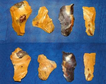 4 Neanderthal multi-tools on Levallois flakes
