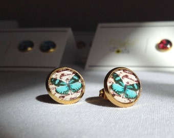 Turquoise Butterfly Stud Earrings on Golden Stainless Steel